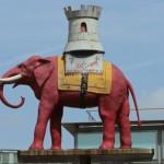 BFI #LFF 2015: ELEPHANT DAYS Review